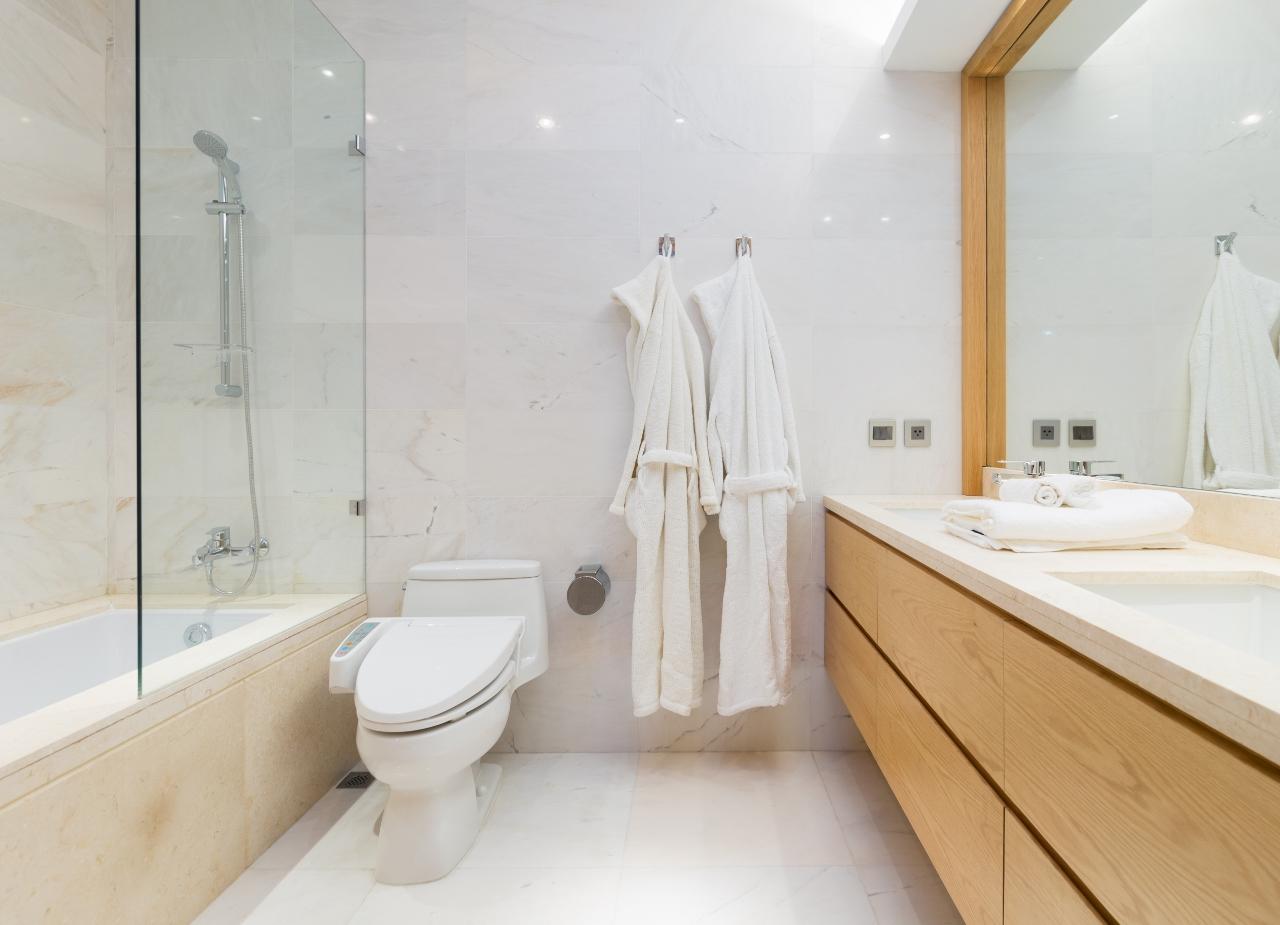 toilet-master-1280x925
